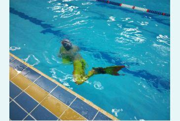 Хвост Дельфина Тропикана