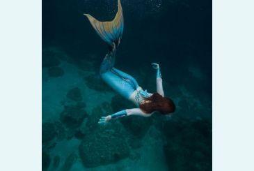 Хвост Дельфина Морская волна под водой