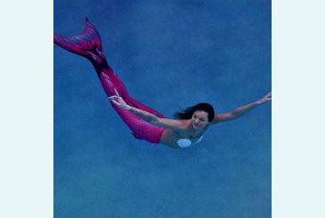 Хвост Дельфина Кариба под водой_1