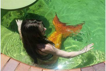 Хвост Люкс оранжевый фото с отдыха