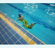 Тестирование хвостика в бассейне