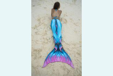 Хвост Дельфина Топаз на пляже_1