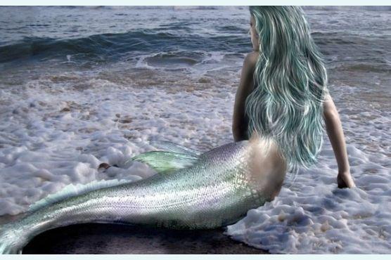 Сказка о серебристом хвосте русалки